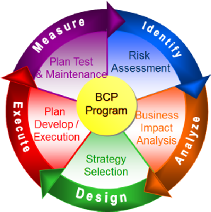 Disaster Recovery Plan (DRP).